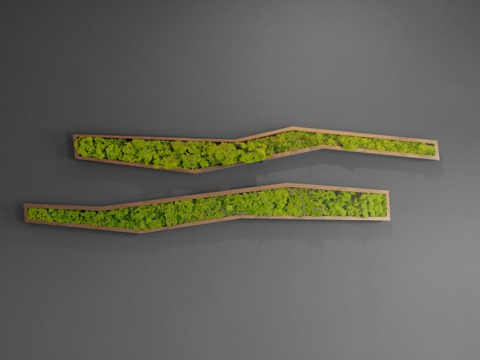 Moss art, Saratoga Office