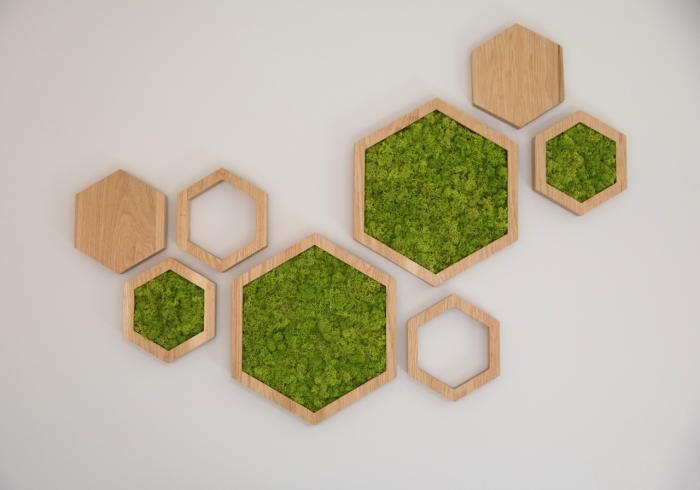 Web-Moss art LGD